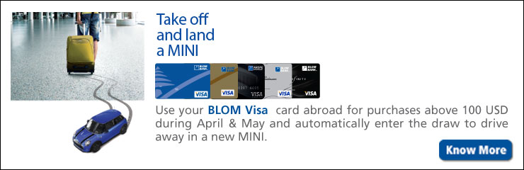 visa mini offer